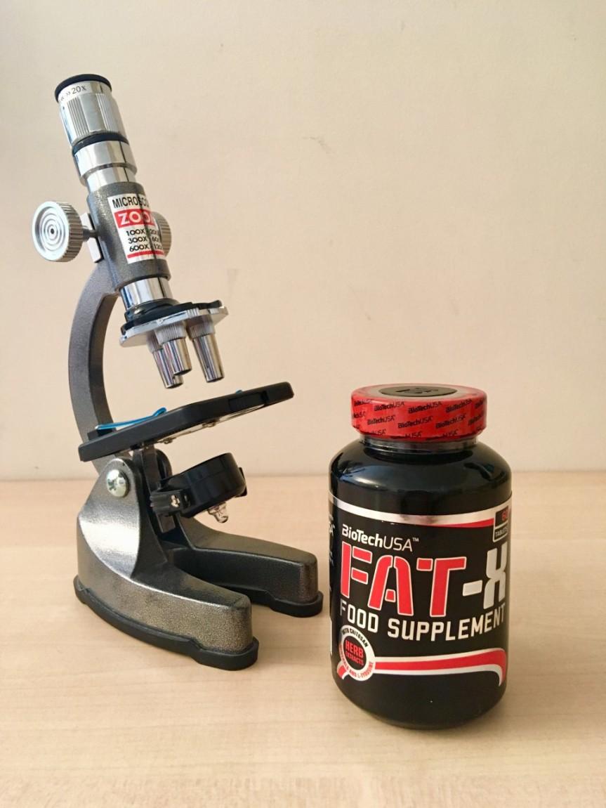 FAT X 1